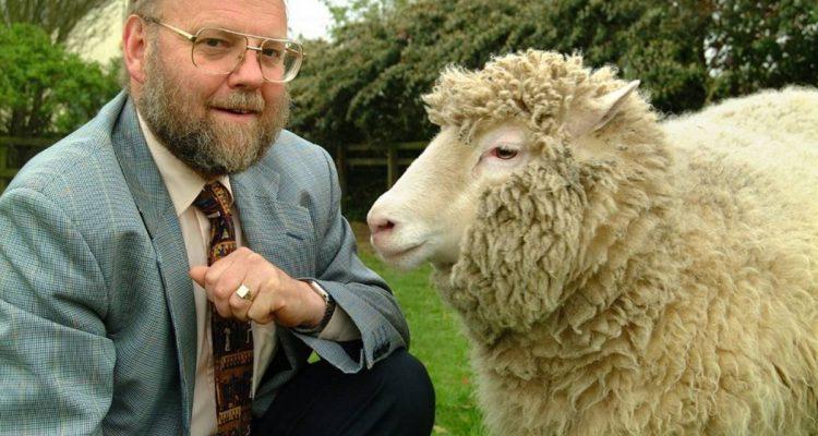 ovelha Dolly e seu criador